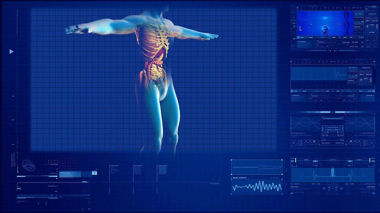 emésztőrendszer vizsgáló szoftver